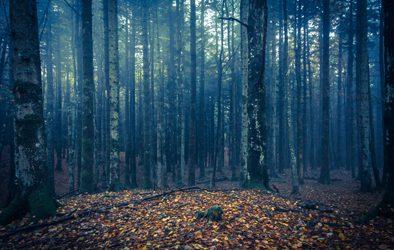 Attention, frontière invisible : 3 conseils pour briser nos chaînes mentales